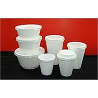 Expanded Polystyrene Foam Products (EPS)