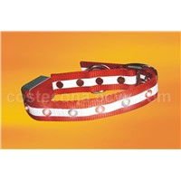 LED Lighted Pets Collar