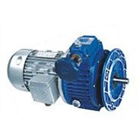 Variable Speed Reducer