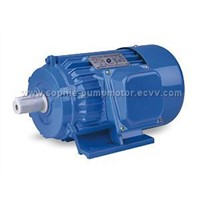 Three phase iron cast motor