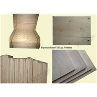 Hight quality Plywood