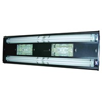 Metal Halide Lighting System