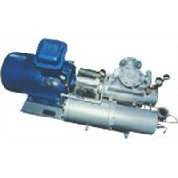 Multiphase Pump