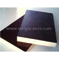 Film faced Plywood(Shuttering Plywood)
