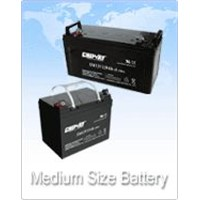 Valve-regulated sealed lead acid battery
