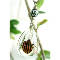 insect amber jewelry mobile phone chain