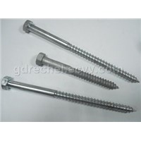 Wood Screw, Hex Lag Screw
