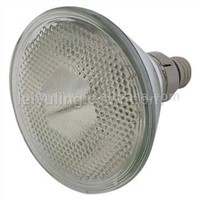 Metal Halide PAR38 Lamp