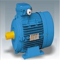 MS series three phase asynchronous motor
