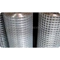Satainless Welded Wire Mesh