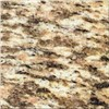 Granite Tile-Tiger-skin Yellow