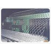 Hexagonal Wire Netting/Chiken mesh
