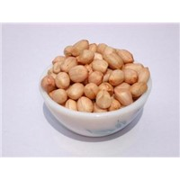 Ground nut,Peanut kernels