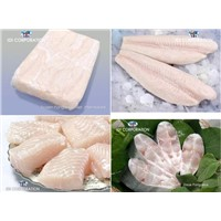 Frozen Pangasius - Catfishes