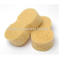 Car Care Sponges