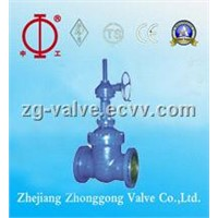 Gear Driving Gate Valve