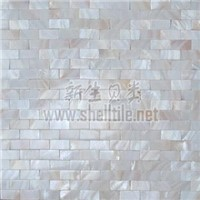freshwater  shell mosaic on mesh