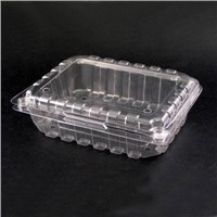 Thermoform plastic container (Fruit Box)