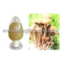 Agrocybe Polysaccharide