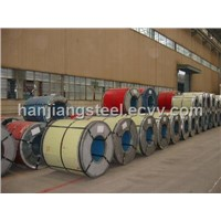 Prepainted Electrogalvanized Steel Sheet