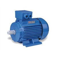 Y2 SERIES THREE PHASE A.C.CHRONOUS INDUCTION MOTOR
