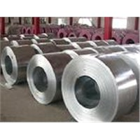 Exporter of Stainless Steel Coils