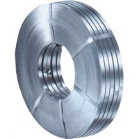 Manufacturer of Stainless Steel Strips