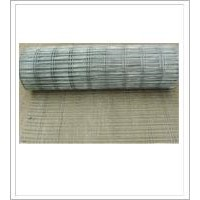Welded Wire Mesh Galvanized Before or After