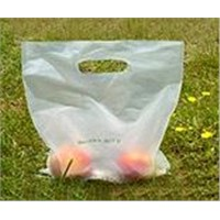biobag,BioBag,biodegradable packaging,biodegradable bags,biodegradable green packaging,