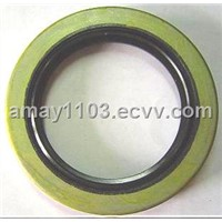 oil seal(auto spare part,bearing seal,o ring)