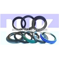 oil seal(rubber seal,o ring,mechnical sel,)