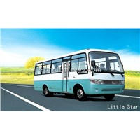 Little Star (6601)