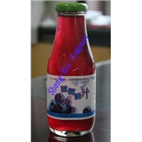 330ml BlueberryFruit Juice(glass bottle)