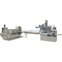 CD-2030 Auto wet tissue making and packing machine