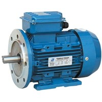 Single Phase Capacitor-Run Induction Motors