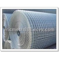 Welded Wire Mesh (DHW002)