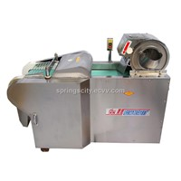 food processing machine,vegetable processor