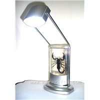 Real insect crystal LED Reading Lamp