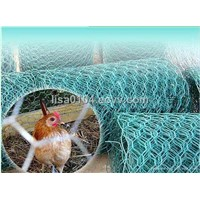 Chicken Hexagonal Wire Netting