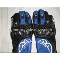 Motorcycle Accessories(Glove)
