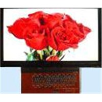 TFT LCD Module 4.3 Inch w/Without Touchscreen