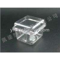 Thermoform Plastic Container