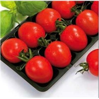 Tomato Tray Machine