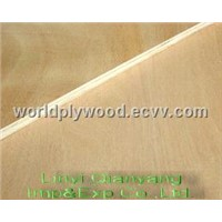 china birch plywood exporter