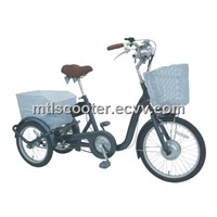 MTL Electric Bicycle (TDM01Z)
