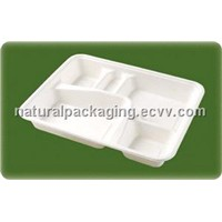 100% Biodegradable Disposable Sugarcane Tableware