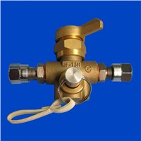 Gas Pre Charge Valve/Gas Valve