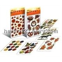 HERMA Decorative Stickers
