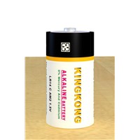 Alkaline Battery (LR14)
