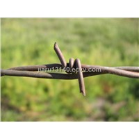 Barbed Wire (001)